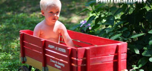 Silas in wagon