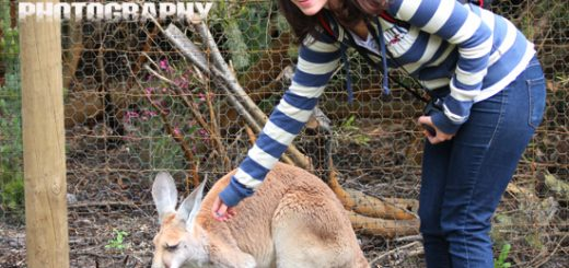 Laura with the Kangaroo at Caversham