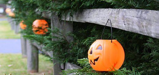 walk in Halloween