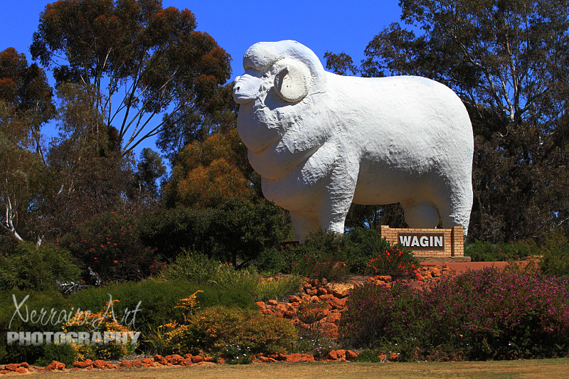 "And when you're at the ""home of the giant ram"" you should go see the giant ram, so we did."