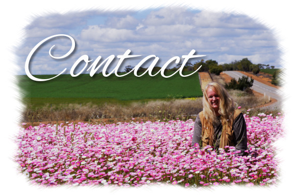 Contact Barb