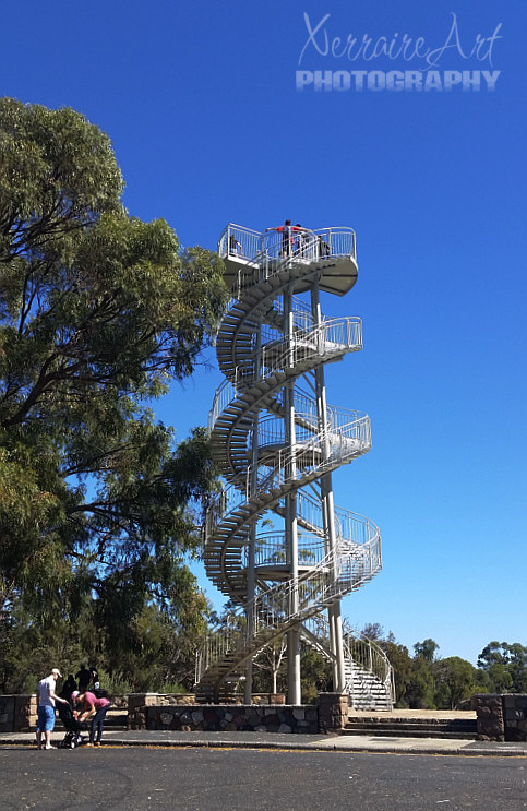 DNA Tower at Kings Park