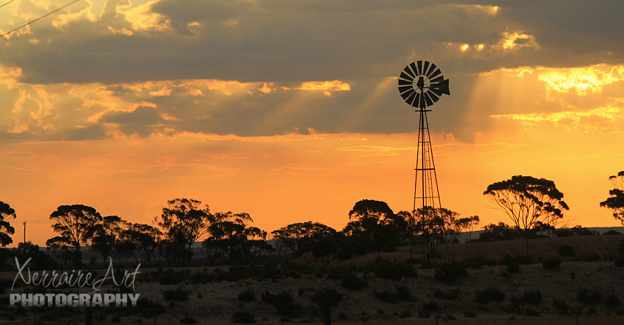 Sunset in a Western Australia field with Windmill