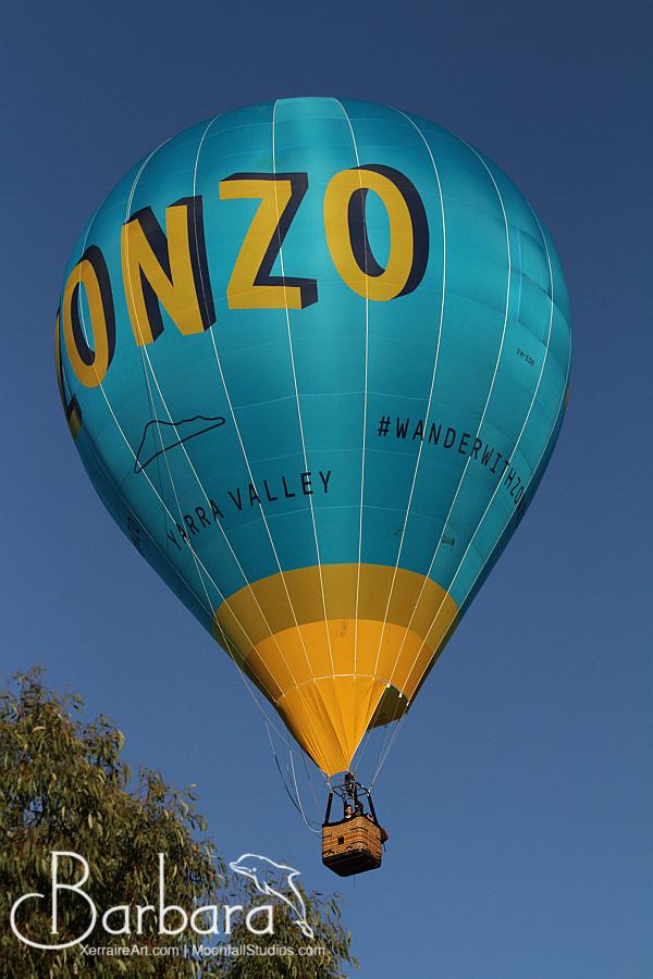 Sole  Balloon