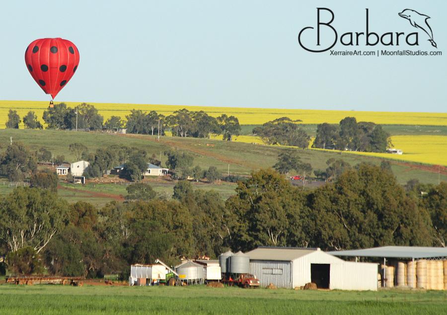 Lady bug balloon
