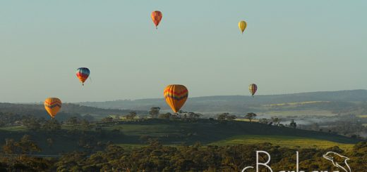balloons over Northam Countryside