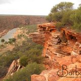 the Murchison River