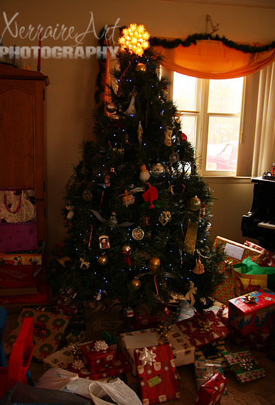 The tree on Christmas Day. Last night's presents cleared out, new ones brought in.