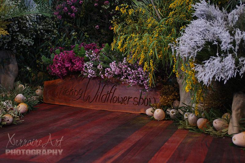 Chittering Wildflower Show
