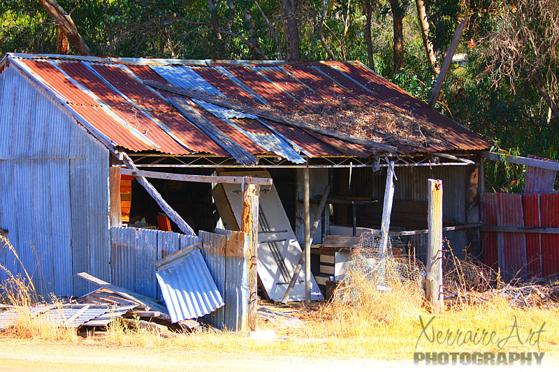 So one of our first stops was this broken down shack....of which we saw many in our little road trip,